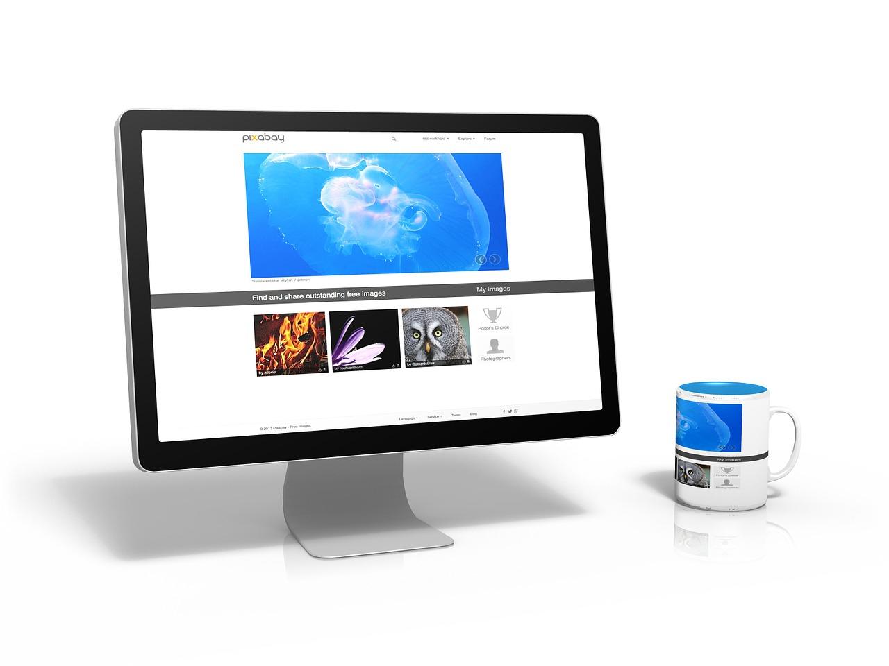 ブログ運営8か月目のアクセス数やらPVやら収益やら収支の報告